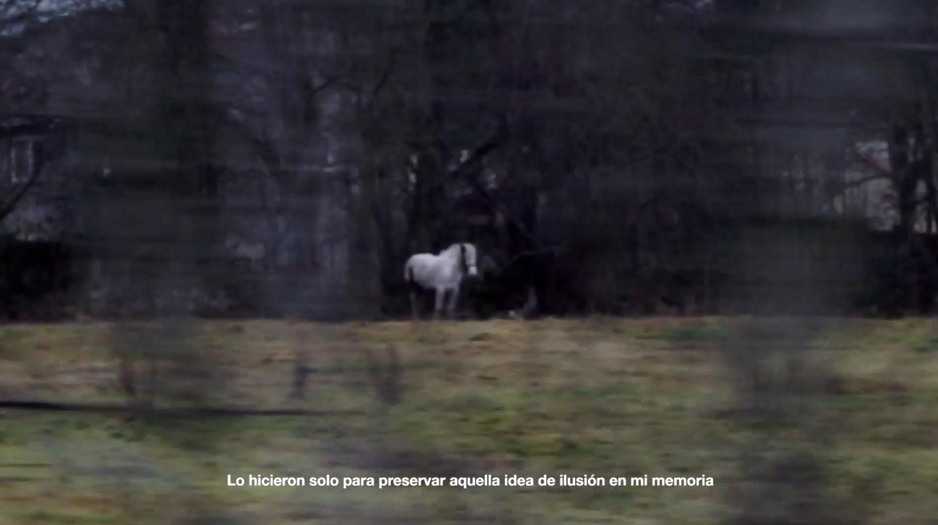 NUL·LA ESTÈTICA. CCMZ. 2018. Still frame